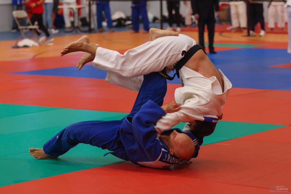 judo veteranos